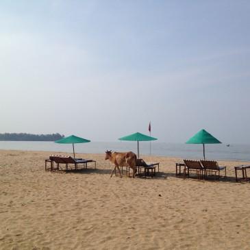 Goa, die unendliche Leichtigkeit des Seins